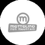 Logo Mottolino